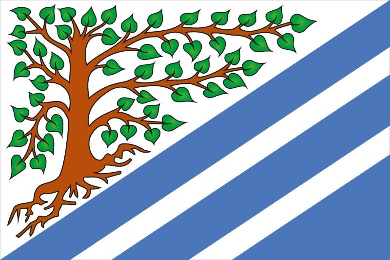 Vlajka obce Mokré web.jpg
